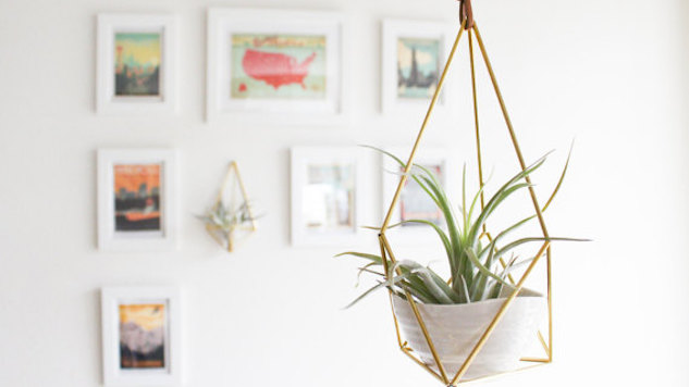 Charming Hanging Plant Holders Design Galleries Paste