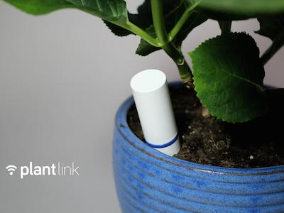 plantlink.png