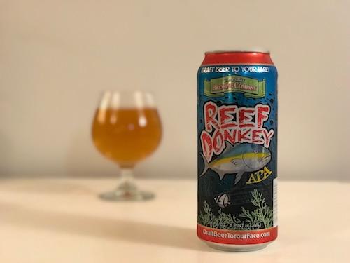 reef donkey.jpg