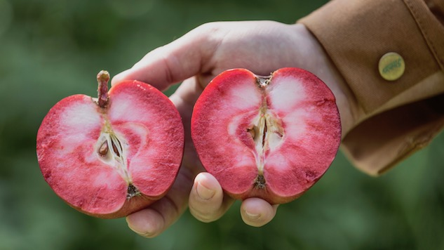 The Hunt for Rosé Cider