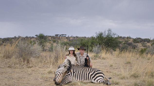 safari-633x356.jpg