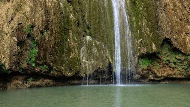 Checklist: Samaná Peninsula, Dominican Republic