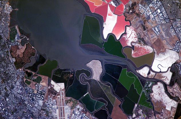 san-francisco-salt-ponds.jpg