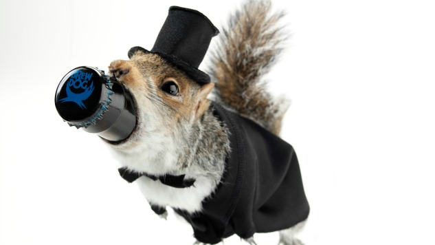 Brewdog Plans To Bottle a 55% Beer in a Taxidermy Squirrel