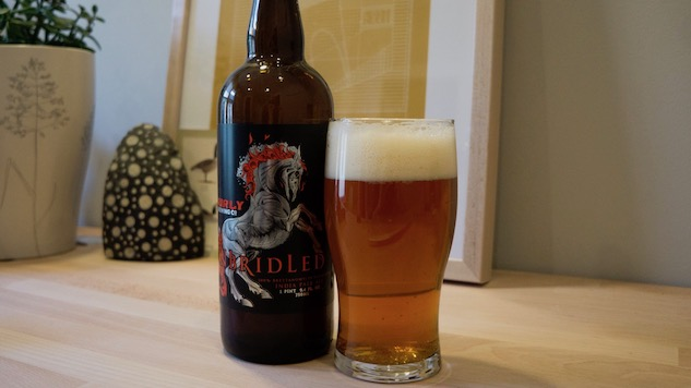 Surly Unbridled Review