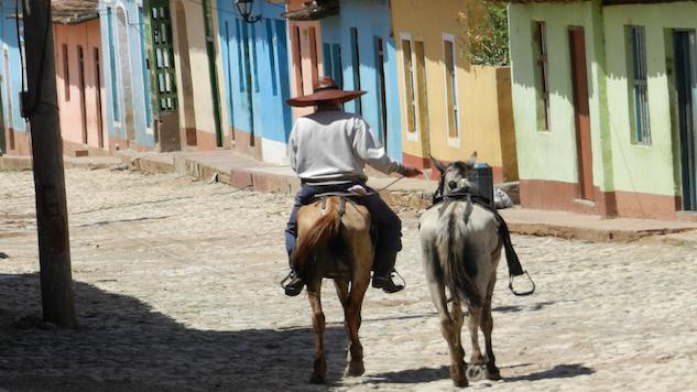 Checklist: Trinidad, Cuba
