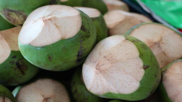 The Vegan Guide to Guanacaste, Costa Rica