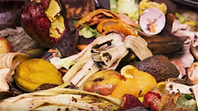 <i>Wasted!: The Story of Food Waste</i>