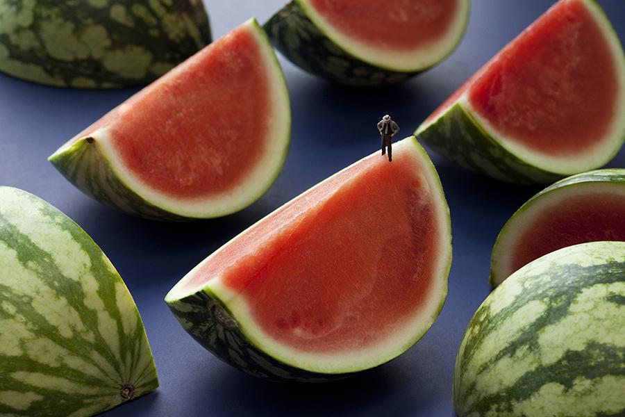 watermelon seed quest 300x500px.jpg