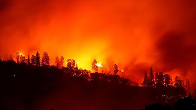 Musicians Across Southern California Lose Houses, Gear to Wildfires