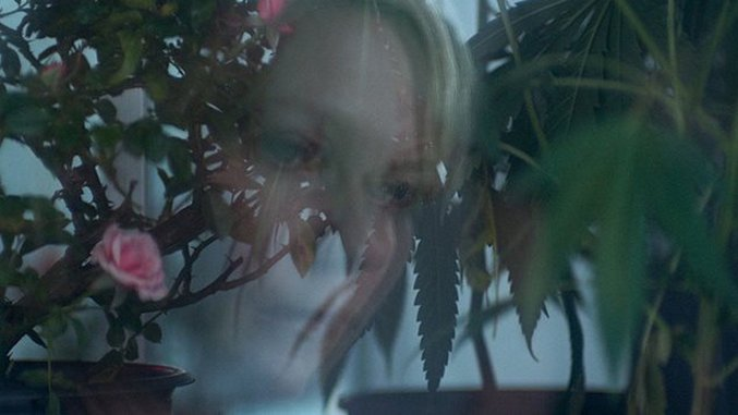 Kirsten Dunst Accidentally Got Stoned On The Set Of Her New Movie