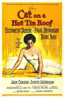 cat-on-a-hot-tin-roof.jpg