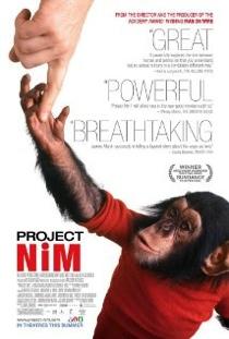 project-nim.jpg