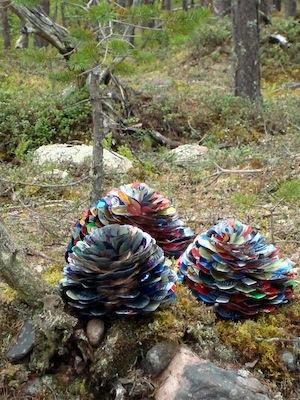 3 pine cones.jpg