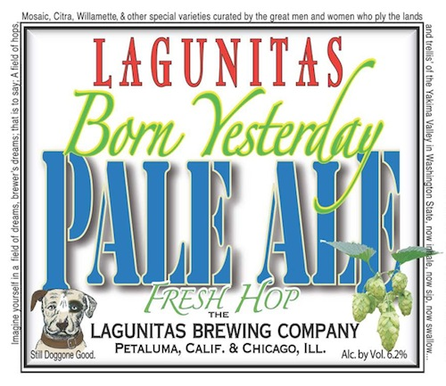 Lagunitas-born-yesterday.jpg