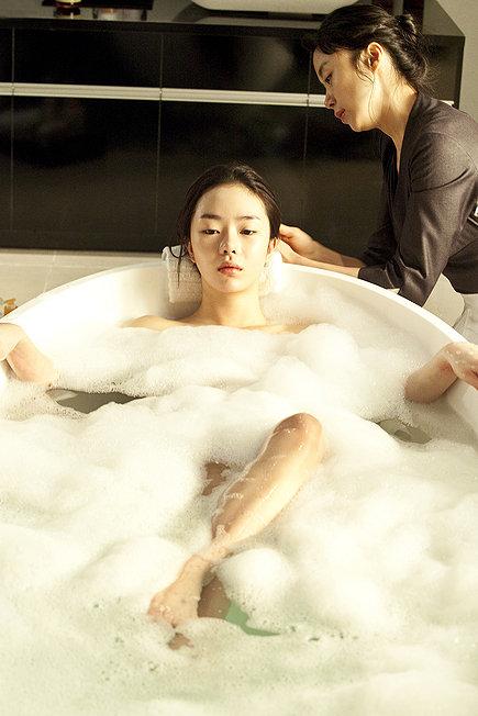 <em>Housemaid</em> (Hanyo)