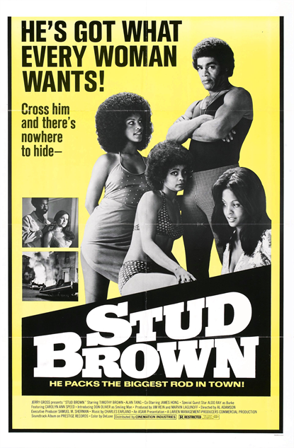 100-b-movie-posters stud-brown-1974