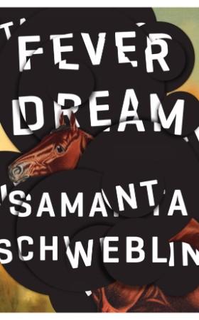 25-best-translated-2016 fever-dream