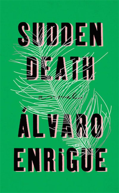 30-best-book-covers-2016 2suddendeathcover