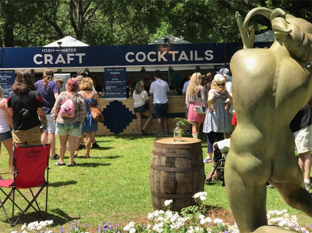 adult-festival cocktails-art