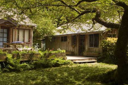 Airbnb Beach Houses Arch Cape