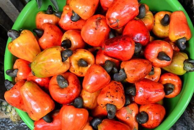 amazon-superfoods paste-health-amazon-superfoods-image-5---maran-on