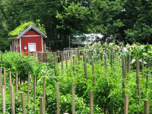 april-food-holidays 16-garden