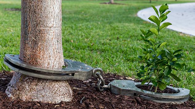 art-basel-roundup yoan-capote--naturaleza-urbana--2012-