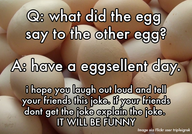 20 Kid-Written Jokes That Are So Bad They're Perfect :: Comedy :: Paste