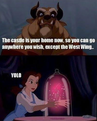beauty-and-the-beast-memes unnamed-3