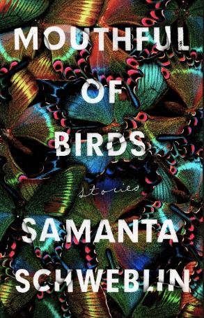 best-book-covers-jan-2019 bbc-jan-19-mouthful-birds-min