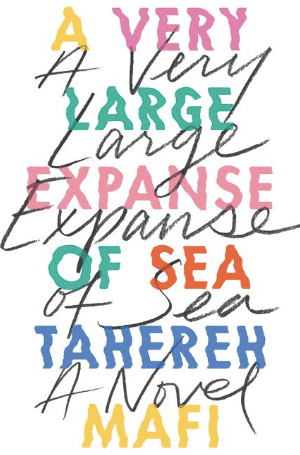 best-book-covers-oct-2018 a-very-large-expanse-of-sea-book-cover-min