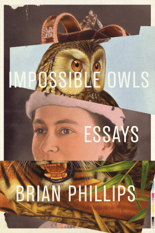 best-book-covers-oct-2018 impossible-owls-book-cover-min