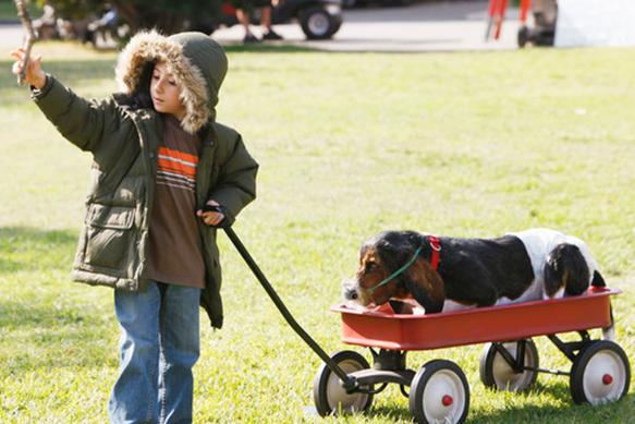 best-tv-dogs doris---the-middle