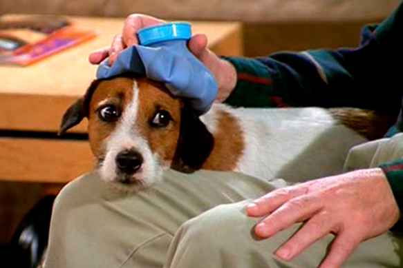 best-tv-dogs eddie---frasier