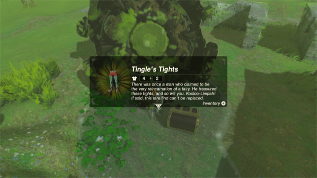 botw-tingle zelda-botw-tingle-tights-3