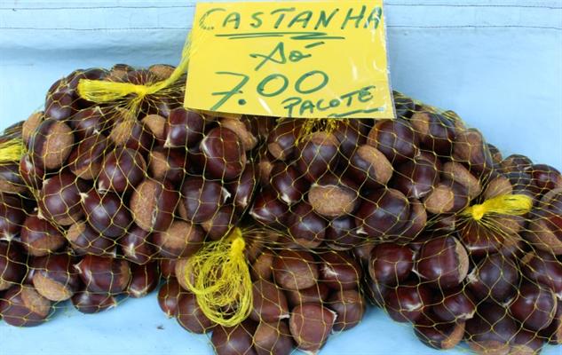 brazil-farmers-market 4-brazil-nut