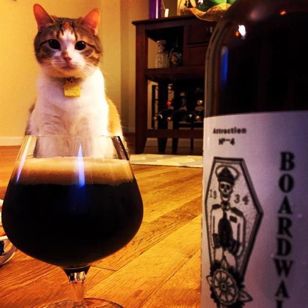 cat-labels forgotten-boardwalk-cat