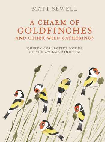 charm-of-goldfinches 1charmcover