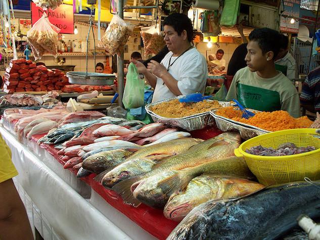 checklistmaz mazatlan-fishing