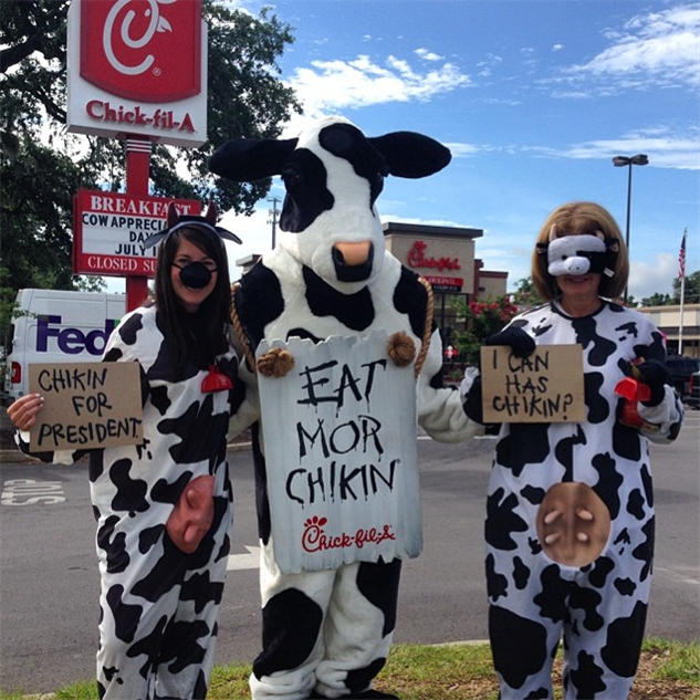 chic-fil-a-cow-style abbie-not-abby