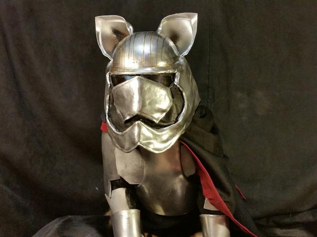cosplay-cat catain-phasma