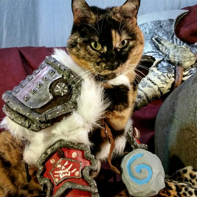 cosplay-cat grommash-hellscream-world-of-warcraft