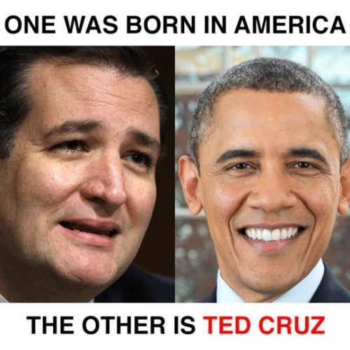 cruz-memes cruz-obama-born-america