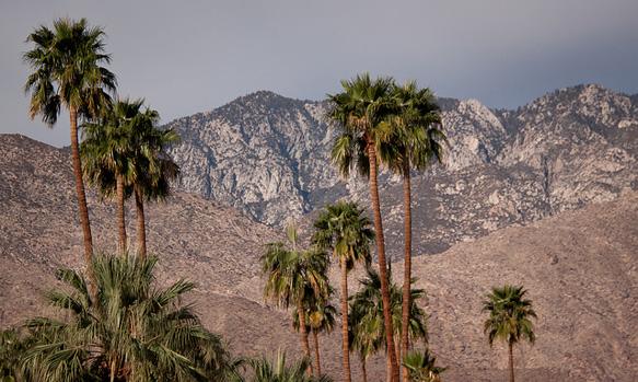 desert-getaways palm-springs-california-paste