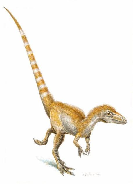 dinosaur-paleoart sinosauropteryx