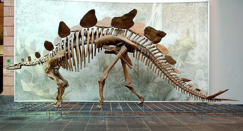 dinosaurs photo_21856_0