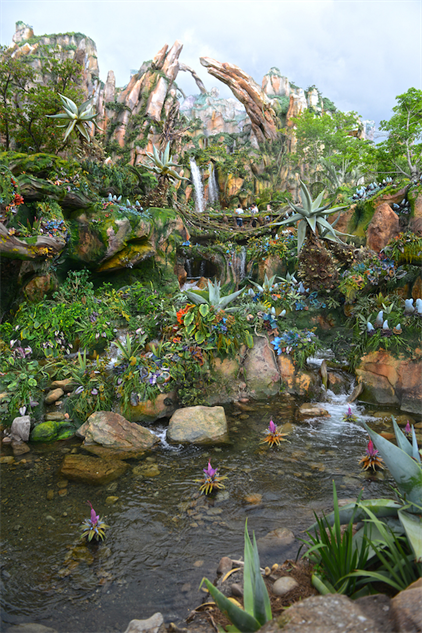 disney-pandora-photo-tour dsc-6489