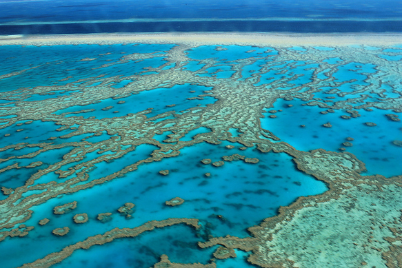 dying-destinations great-barrier-reef-before-its-gone-paste