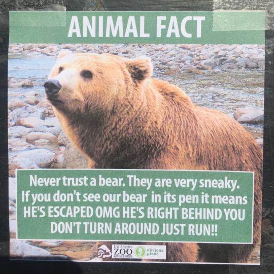 fake-animal-facts animal-facts-8
